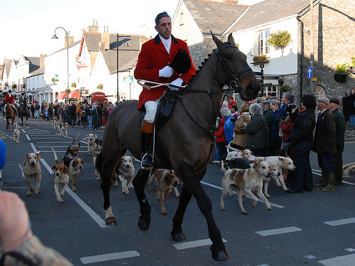 Boxing Day Hunt in Cowbridge